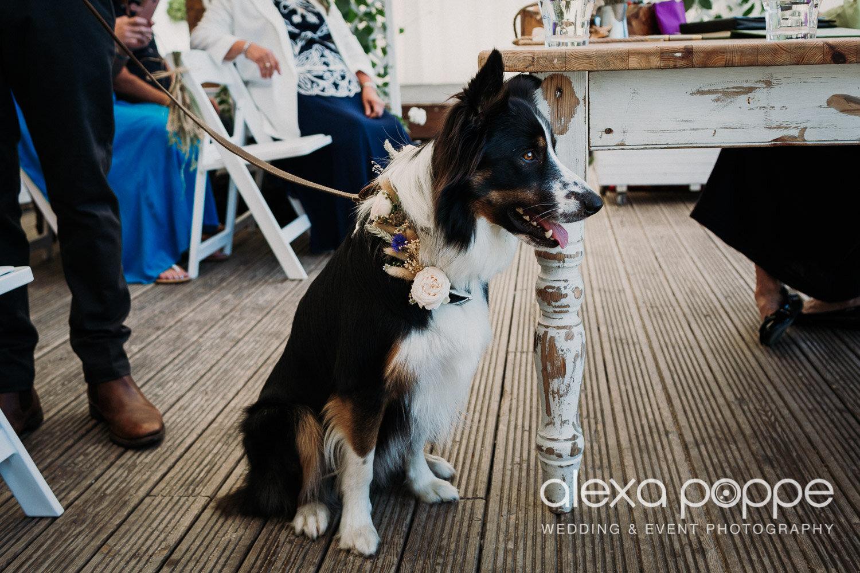 sl_wedding_lustyglaze_cornwall_11.jpg