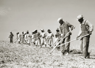Bill Lynch was the son of a potato farmer in Suffolk County, Long Island (Photo courtesy of the Library of Congress)