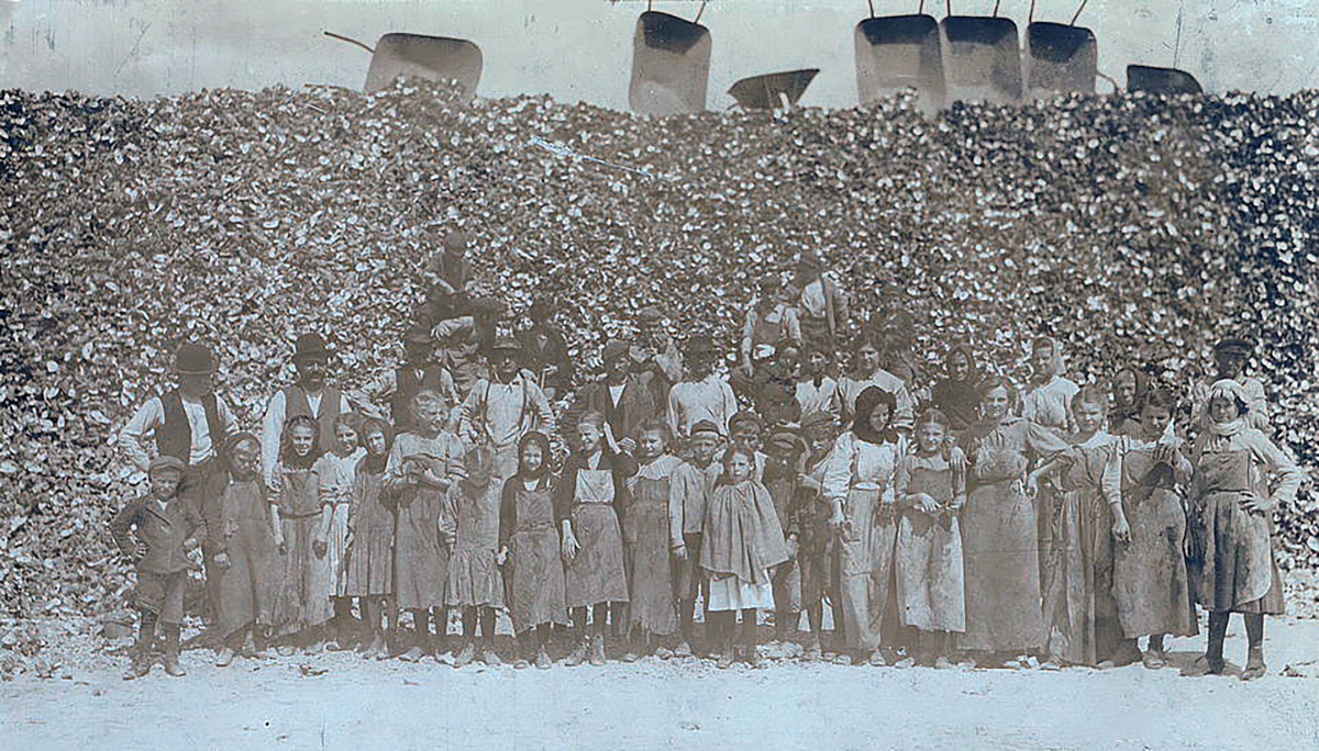 Oyster shuckers, Dunbar Louisiana, 1911, Courtesy of the Library of Congress