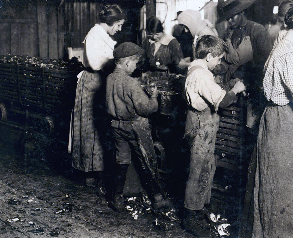 Workers shucking and packing oysters for the Varn & Platt Canning Company, Bluffton, South Carolina, 1913, Courtesy of the Library of Congress
