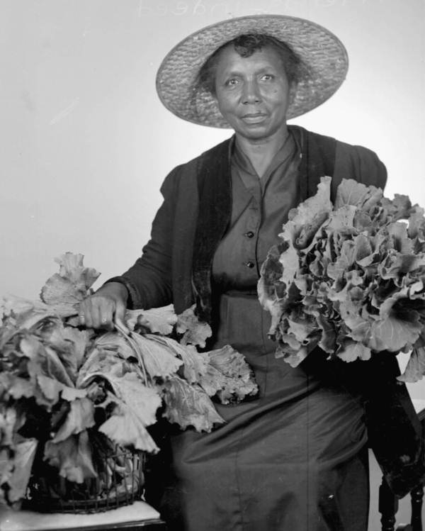 Woman with collard greens, Tallahassee, Florida, Courtesy of the Library of Congress