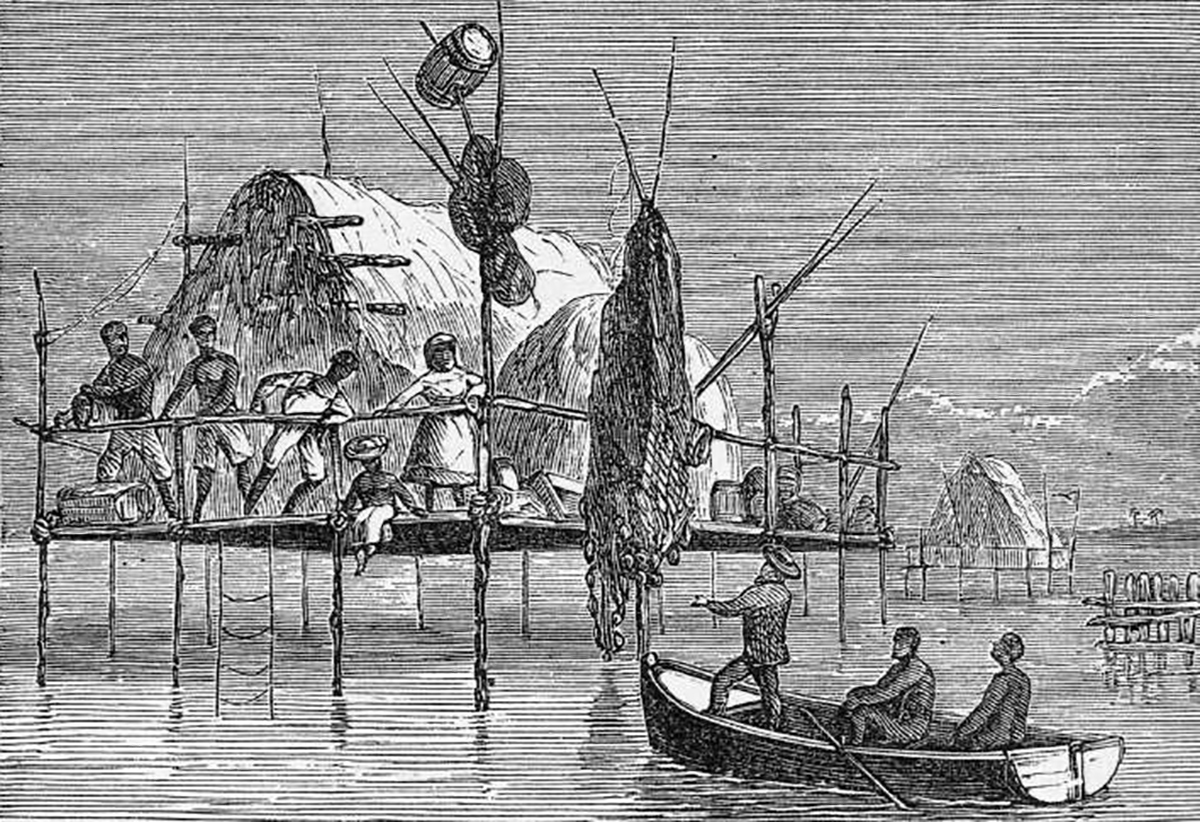 Sponge-Fishers' Houses, Cuba, 1873, (Courtesy of the New York Public Library)