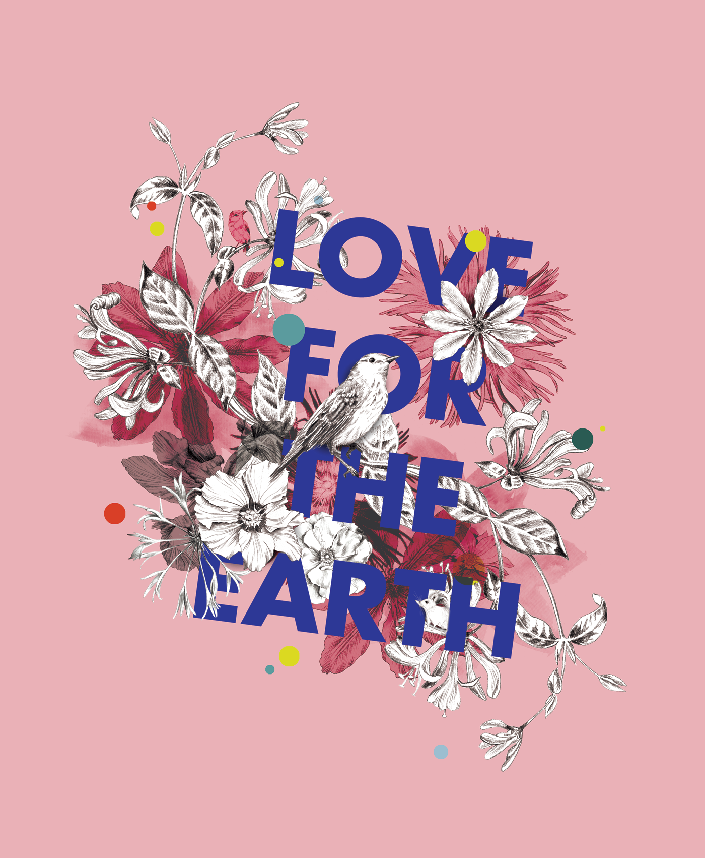 fig. 1. Love for the earth; a bird, hibiscus, honeysuckle and a tiny shrew