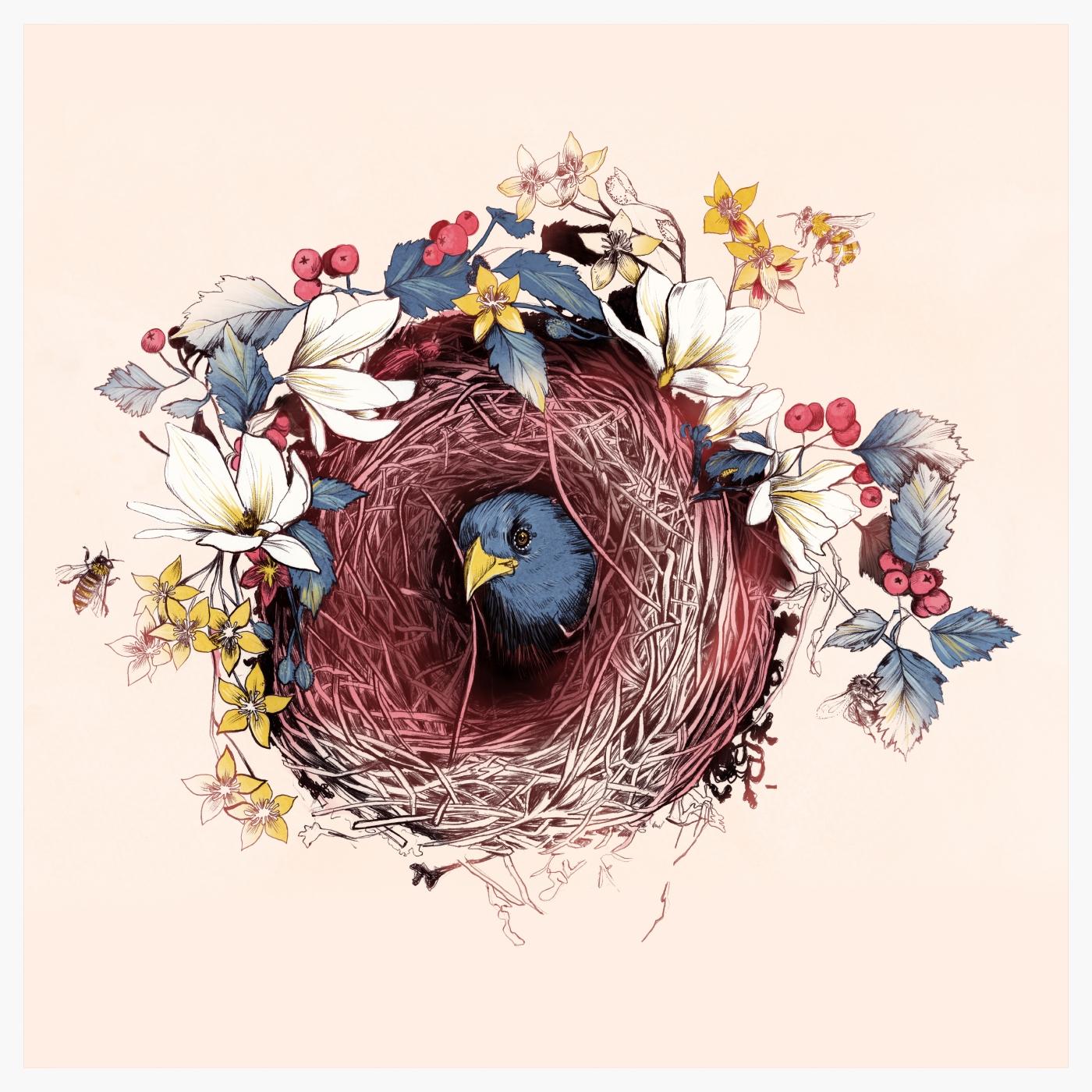 fig. 1. Nesting