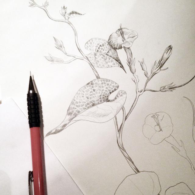 fig. 3. Process sketching