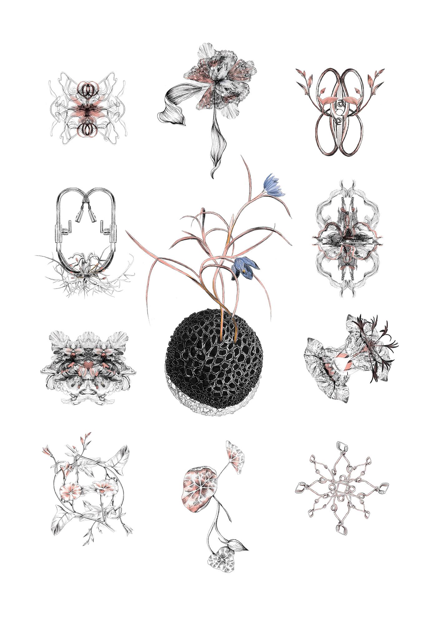 fig. 2. Respiring Organisms