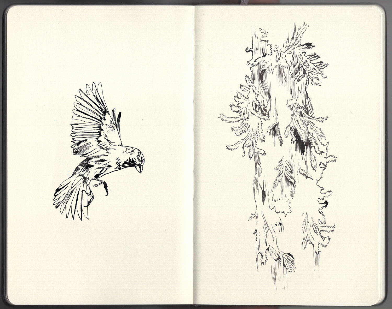 LASC_Personal_Sketchbook_2019_01_Pagina_16.jpg