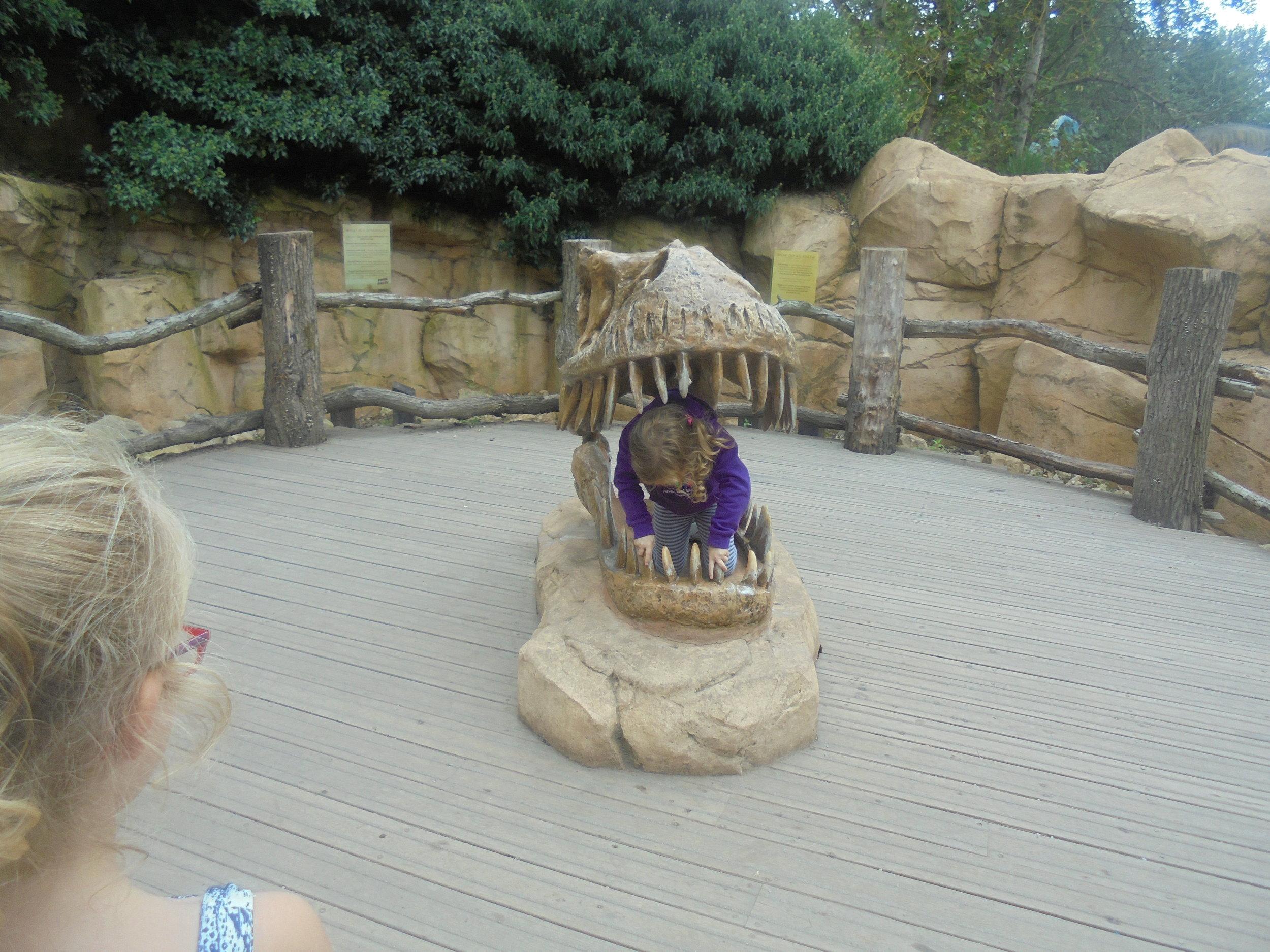 Safari Park 6.JPG