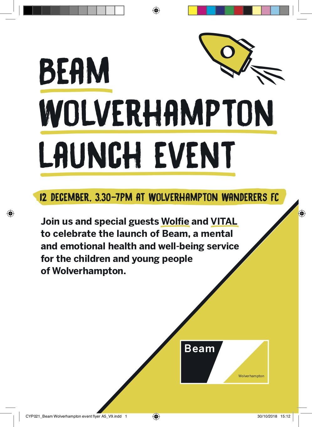 Download a launch event flyer  (PDF)
