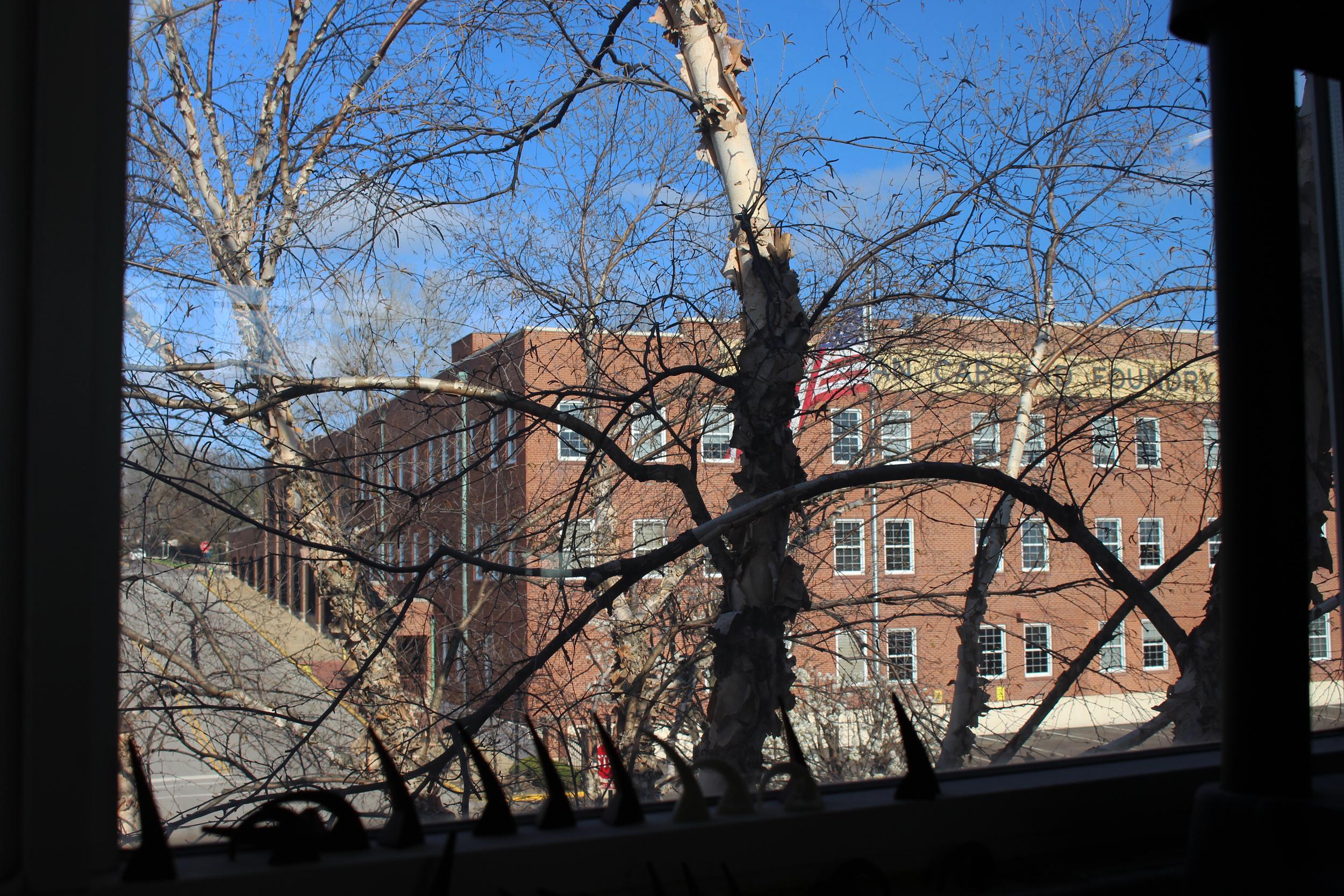 Laura's view from her studio window.