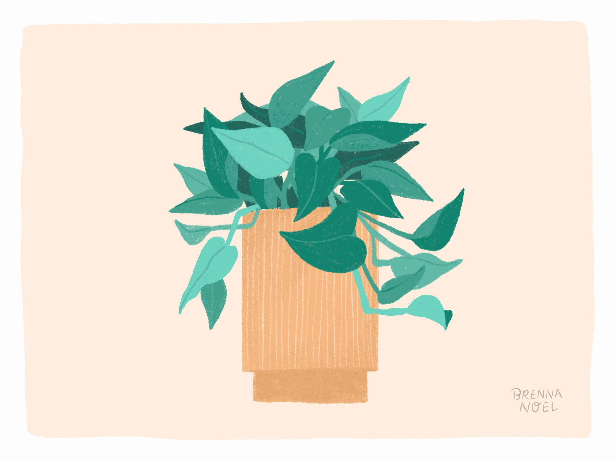 BN-Dribbble-Houseplant9.jpg