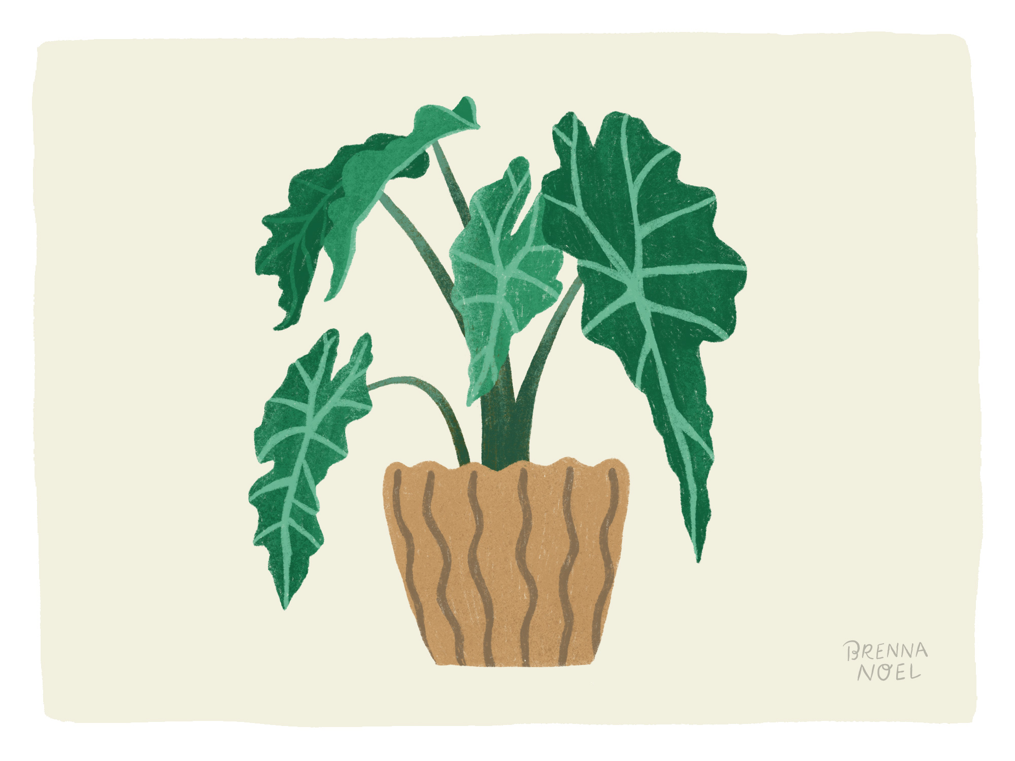 BN-Dribbble-Houseplant10.jpg