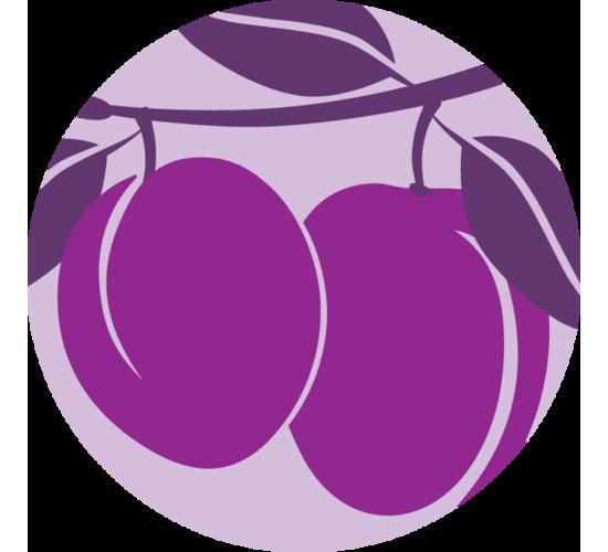 RoundIcons-24-Prunes.png