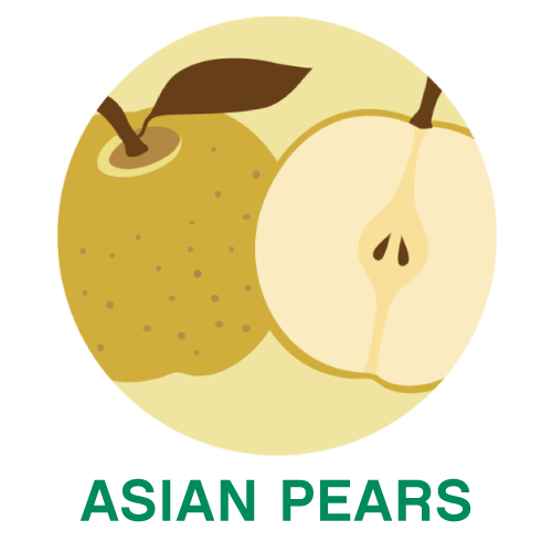 AsianPears.png