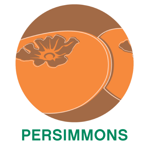 Persimmons.png