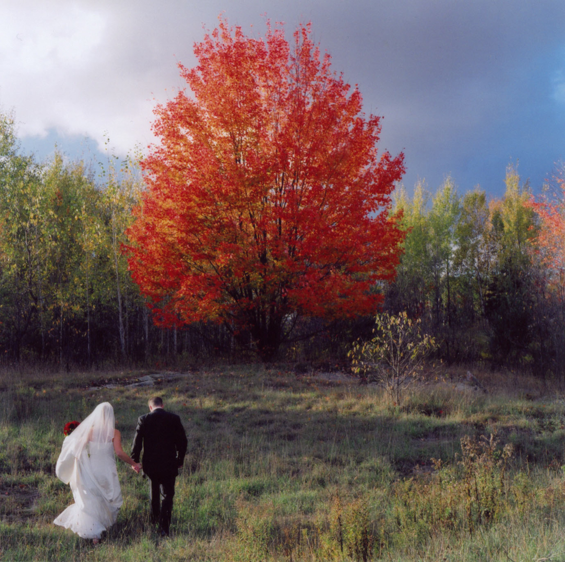 weddings_by_michellequance-33.jpg