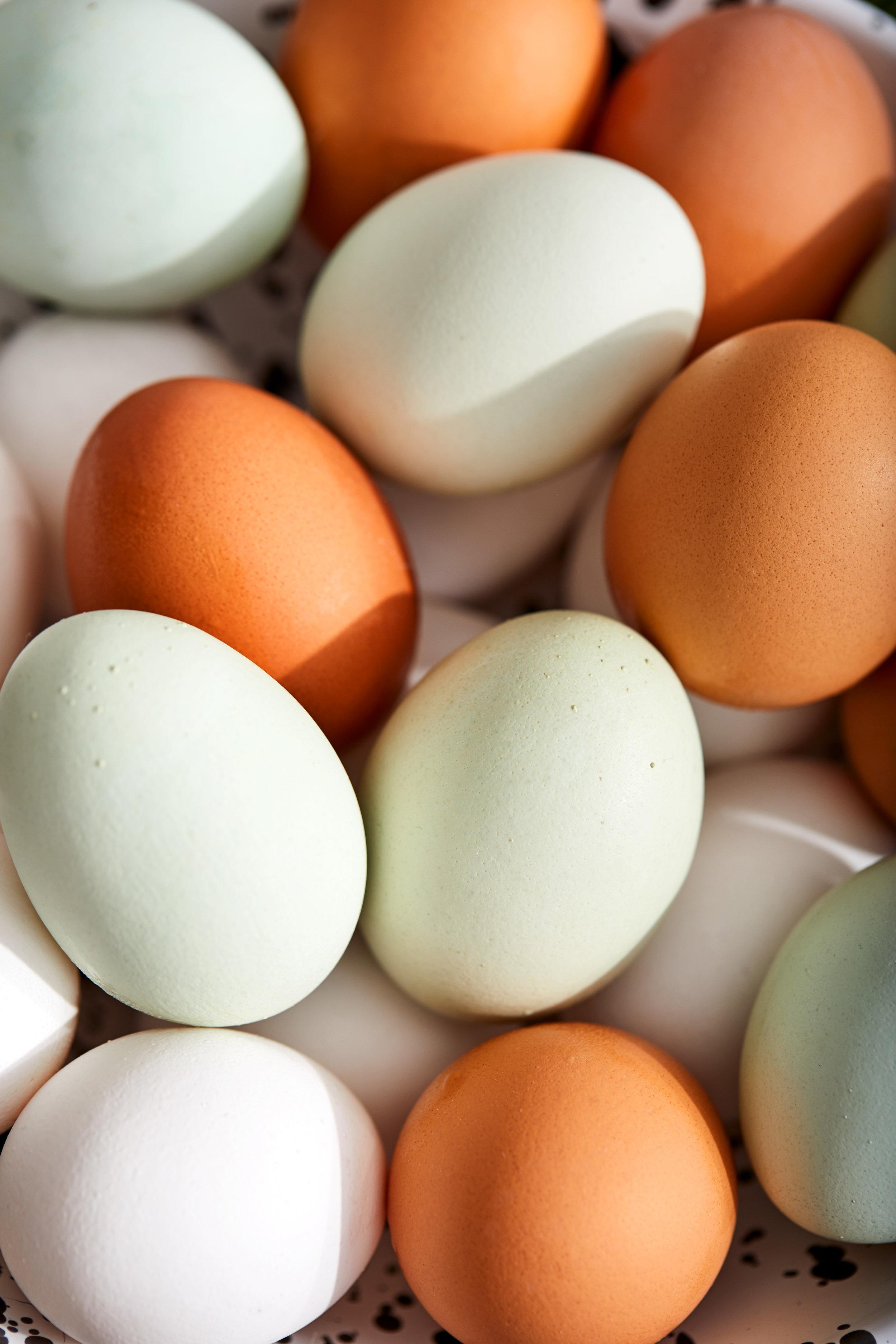 Eggs_Macro_Holiday-Gift-Guide_10218_1394_RGB_crop.jpg