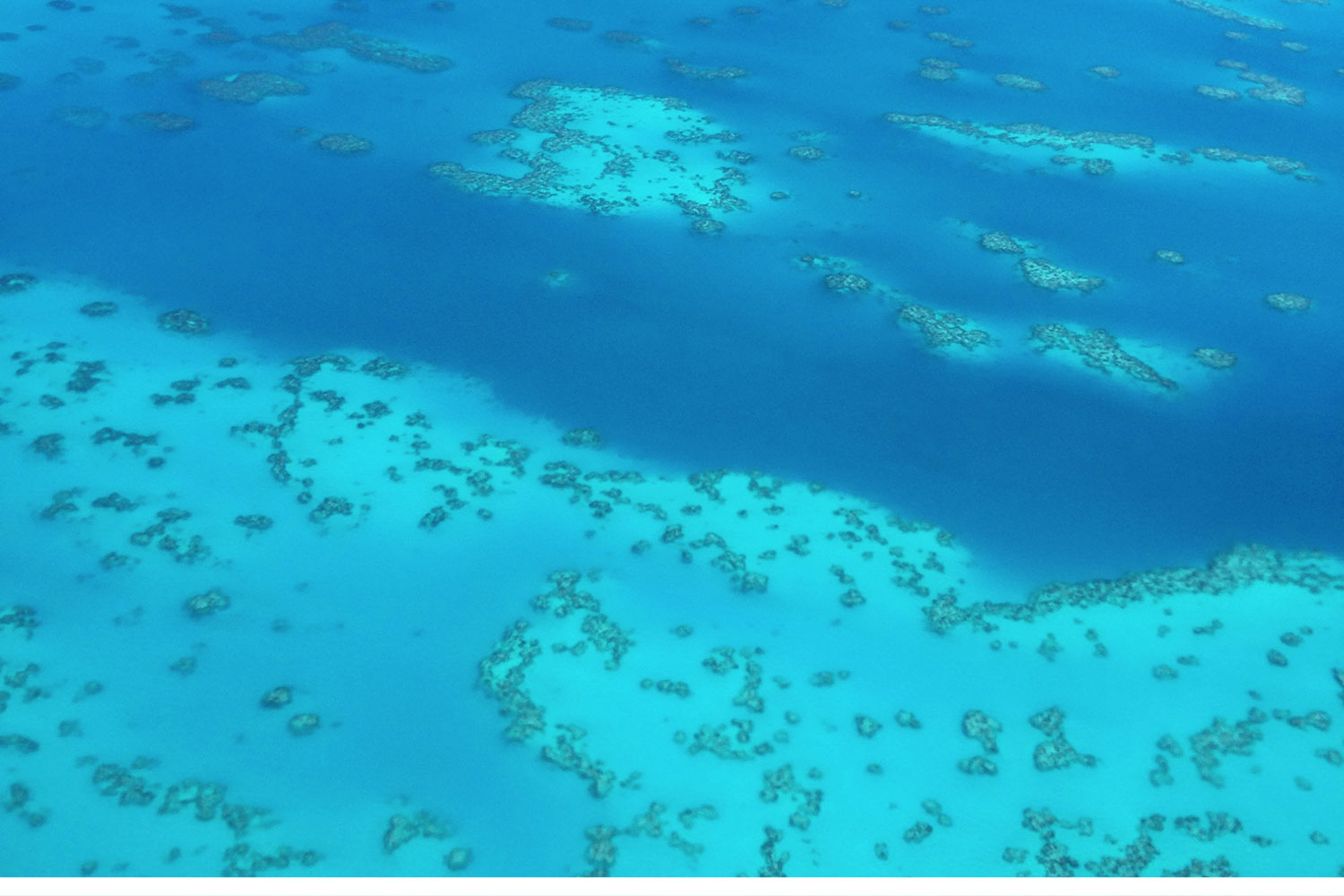 The flight into Bermuda sold us at first sight. The reefs were abundant and so beautiful, but home to many shipwrecks. Ever wonder why they call the Bermuda Triangle the Bermuda Triangle? Aside from the tales, the reefs were most likely the problem.