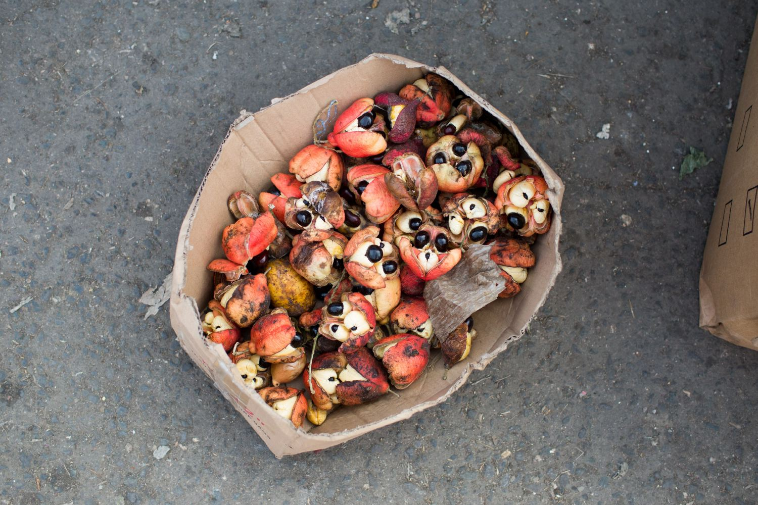 Above is ackee fruit, used to make the national dish ackee with cod. Though you have to be careful with ackee as if eaten when unripe, it  can   be toxic and deadly. When ripe, the yellow arilli is the only portion that can be eaten and makes a delicious meal.