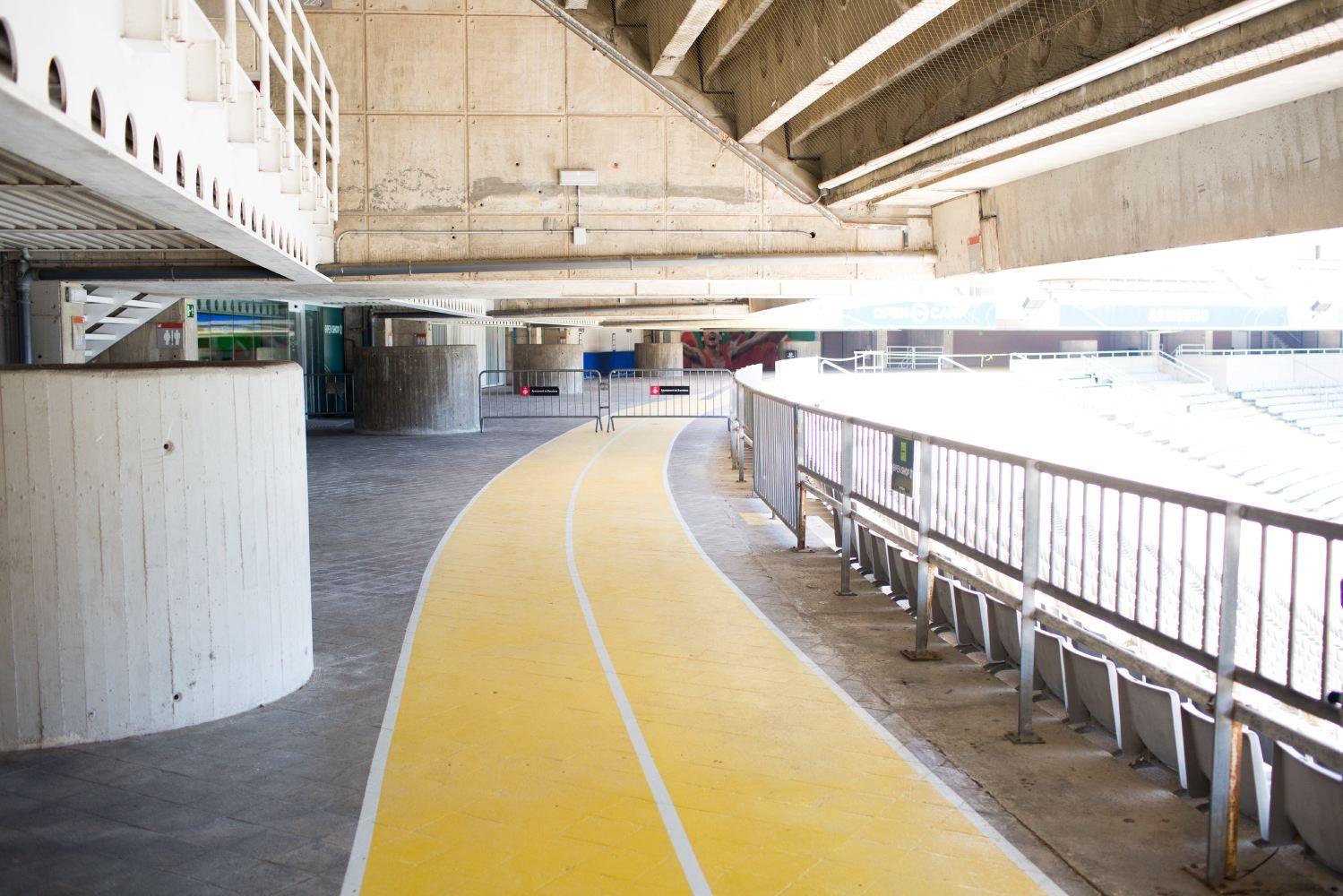 Yellow-52-07.JPG
