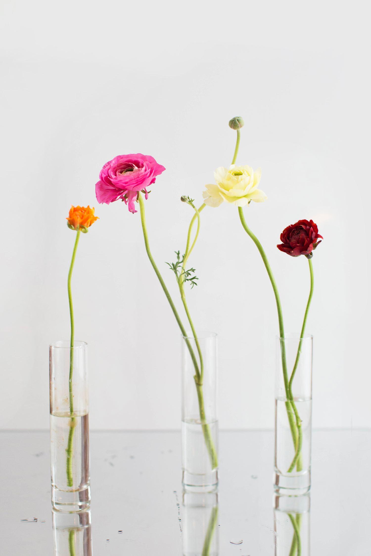 Spring Floral Portraits | You've Got Flair