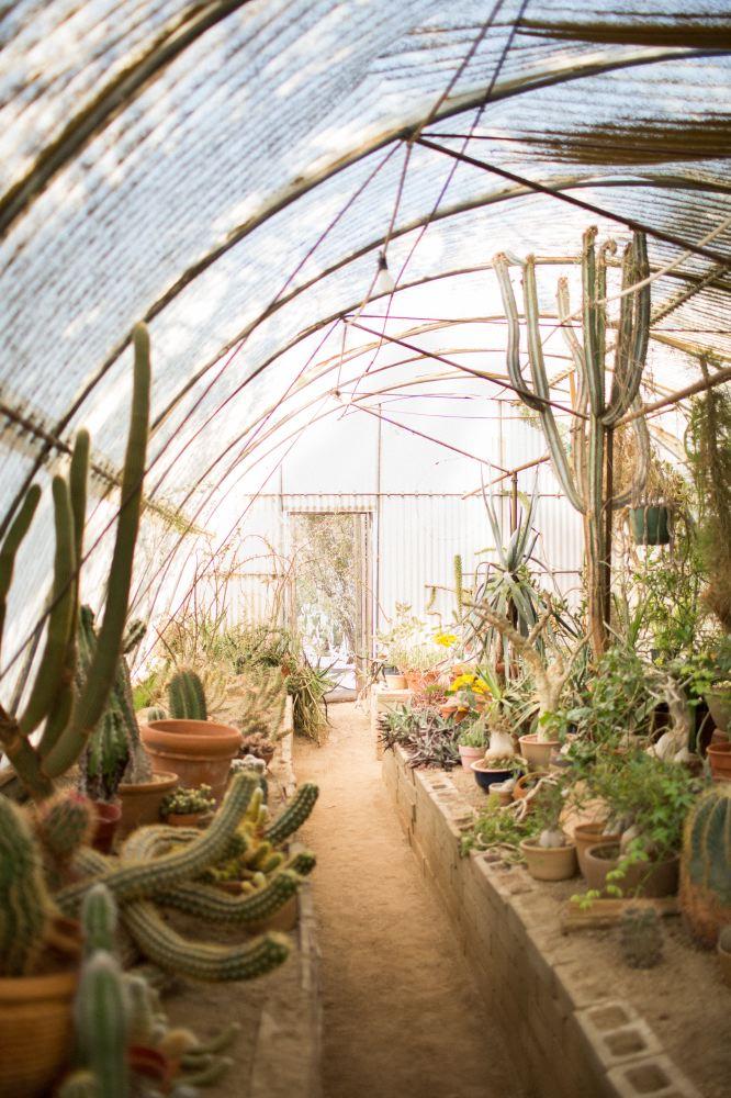 Moorten Botanical Garden, Palm Springs, CA   You've Got Flair