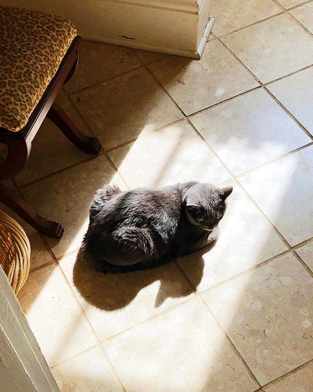 My sunbathing princess 👑