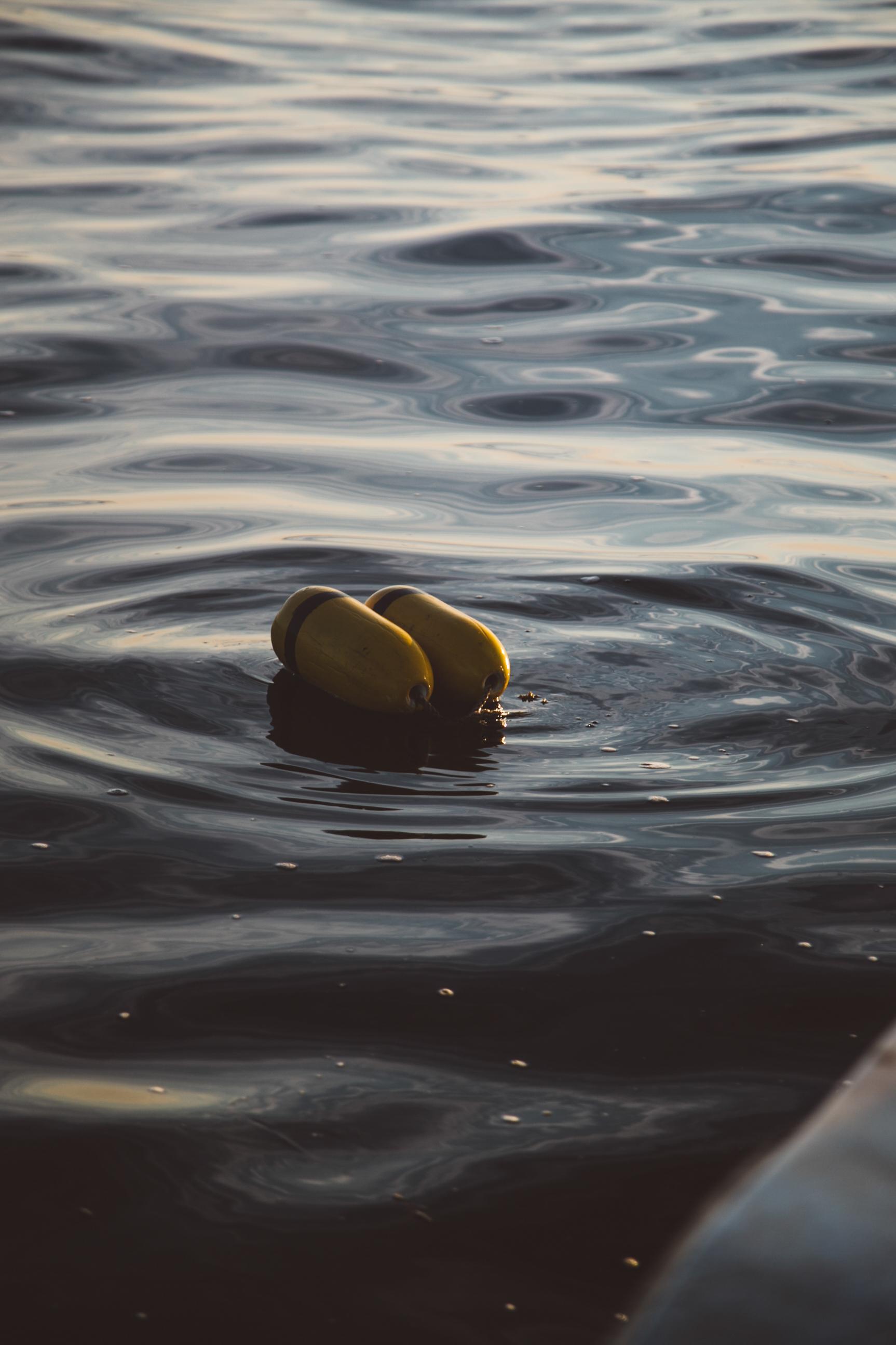 Buoys in Casco Bay. Jenny Rebecca Nelson © 2016