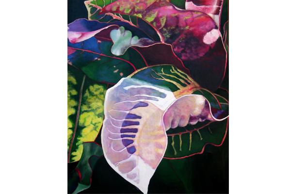 Ti Leaves, Kauai II