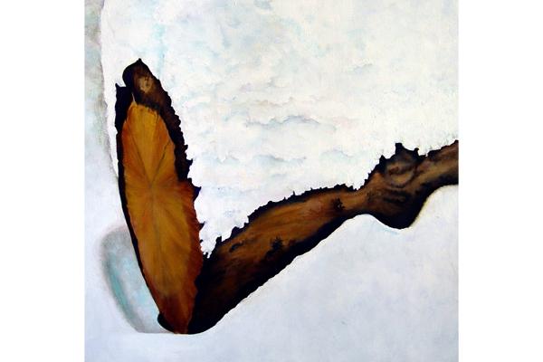 Log in the Snow II