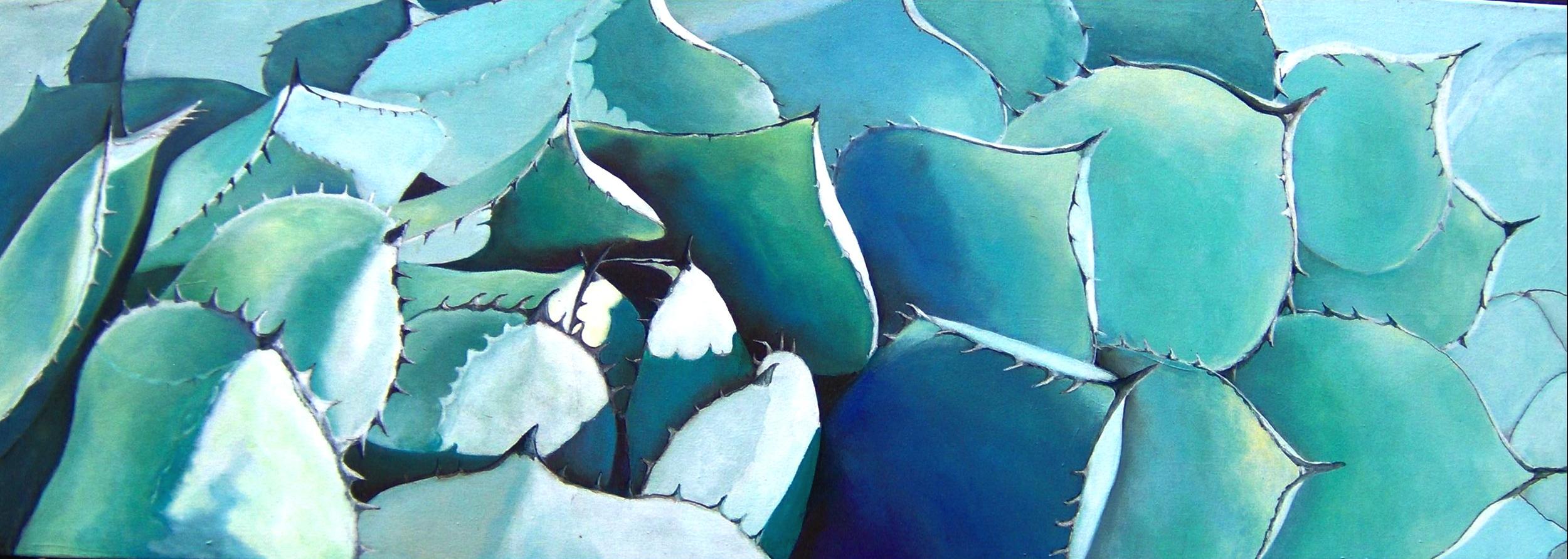 Blue Agave II