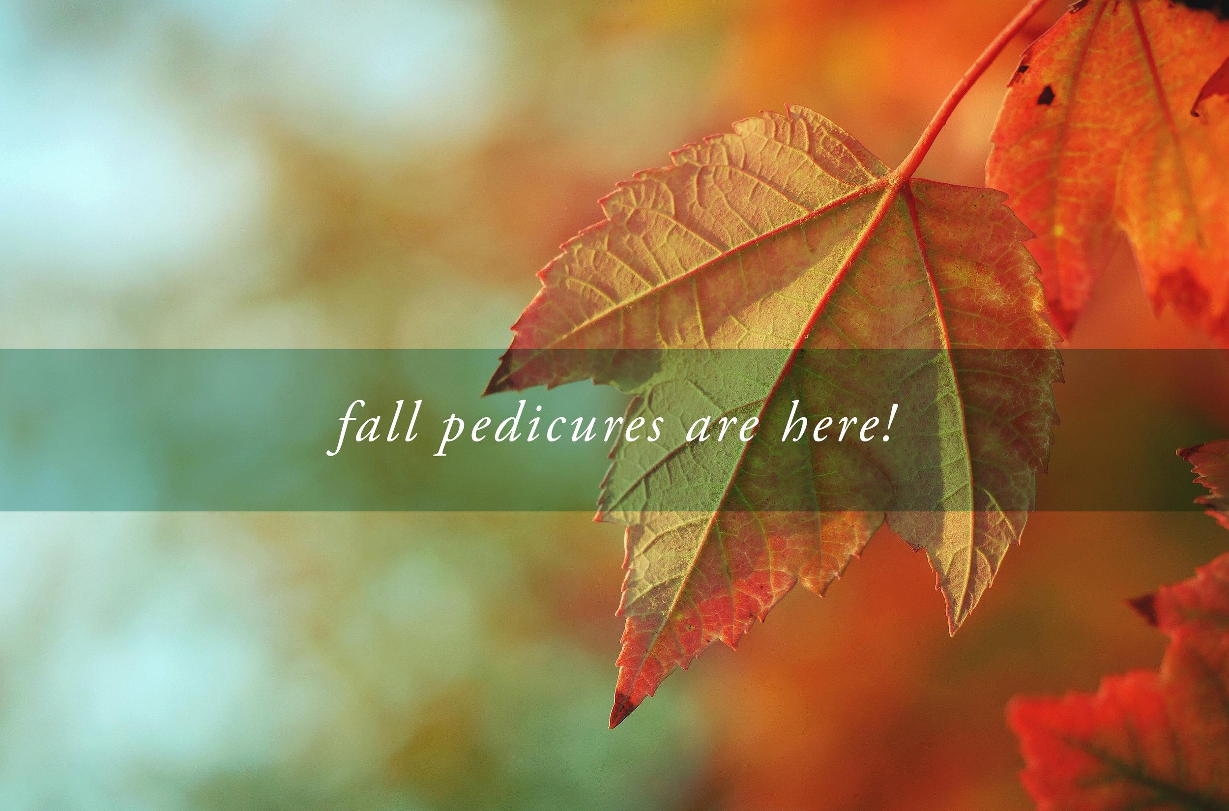 Seasonal Pedicures Banner.jpg