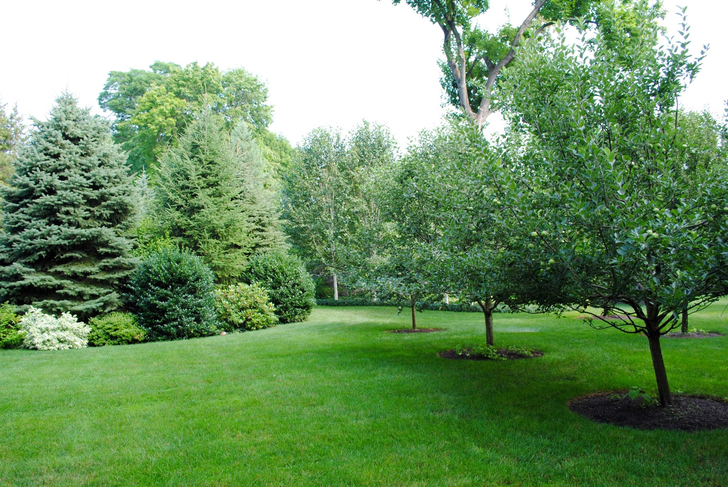 good-gardens-tree-lined.jpg