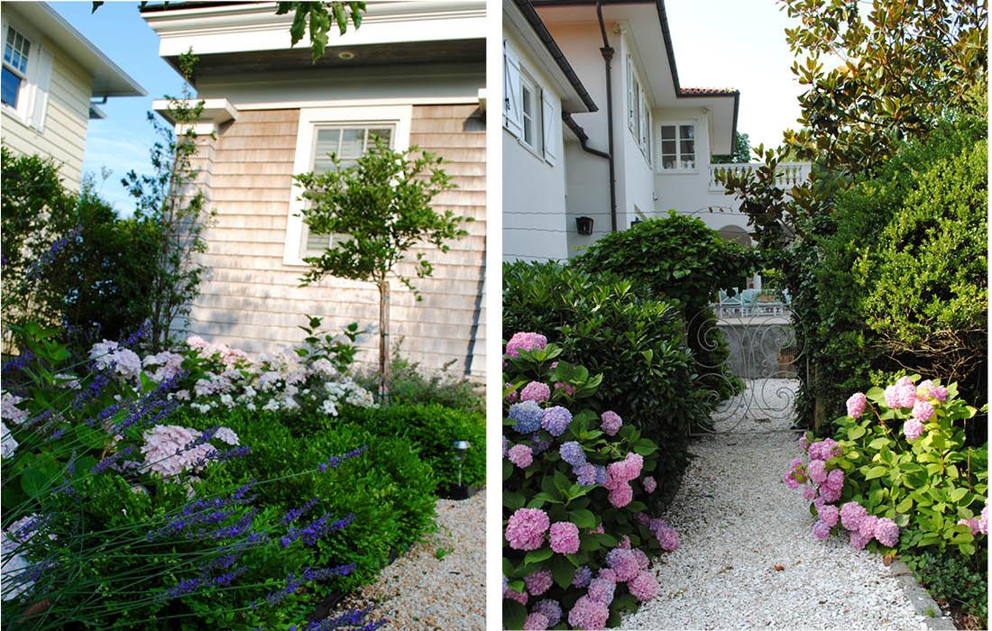 apple-tree-lavender.jpg