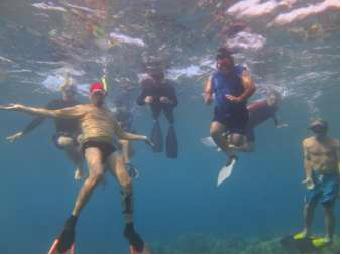 Mayor Alan Arakawa (in blue) tours a Ka'anapali reef to increase first-hand experience of marine degradation.
