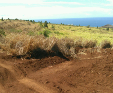 EXAMPLE OF WATER BAR TO DISSIPATE WATER AND SEDIMENT INTO THE FIELD IN WAHIKULI WATERSHED
