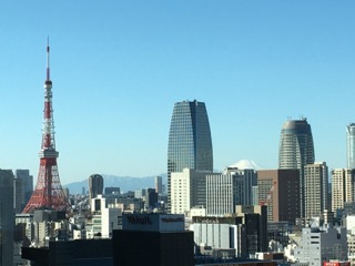 View of Tokyo, Tokyo Tower, and Mt. Fuji