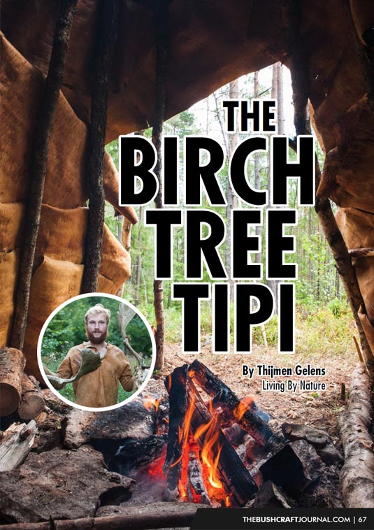 bushcraft-journal-001-birch-bark-tipi.jpg