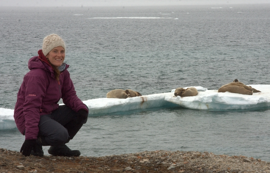 Shanti Davis has been working in the Arctic for a decade, during which time she's been involved with numerous studies focused on the biology and ecology of birds. She studied tundra nesting seaducks in NWT while doing her B.Sc. at the University of Victoria, and then directed her attention to unravelling the life history and migration patterns of Sabine's gulls on Nasaruvaalik Island for her M.Sc. at Memorial University.