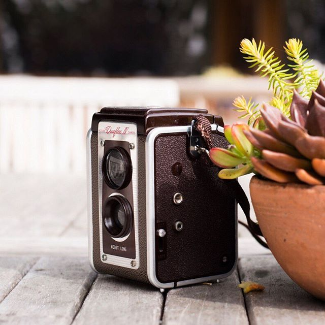 📷 by @ericalkennedy When you come to camp, you can bring any camera that you love - your old film camera, your phone, or your state-of-the art DSLR. Snap away fireflies! . . . . . . .  #photography #womenphotographer #photographylife #womenphotographers #womenphotography #vintagephotography #vintagecamera