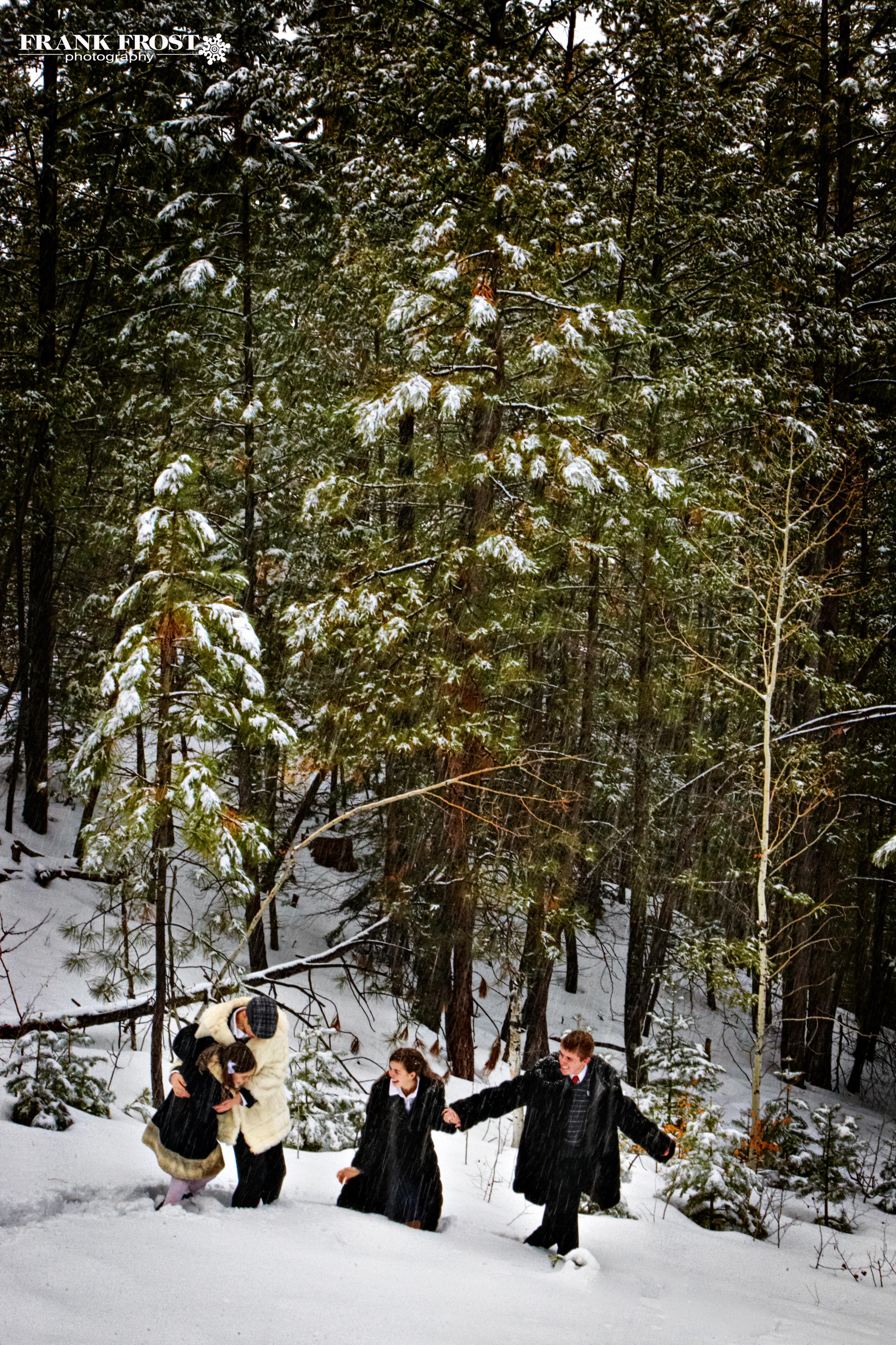 Narnia 10.jpg