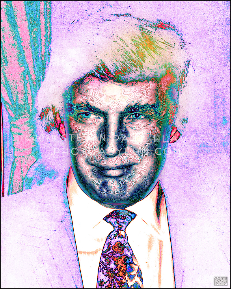 Donald Trump - 45th President of the United States
