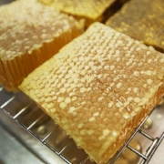 Austin Statesman: Two Hives Honey in East Austin