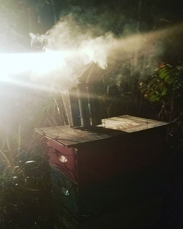 Moving bees at night is all fun and games til the bees realize whats happening,  right @txkeepercider?