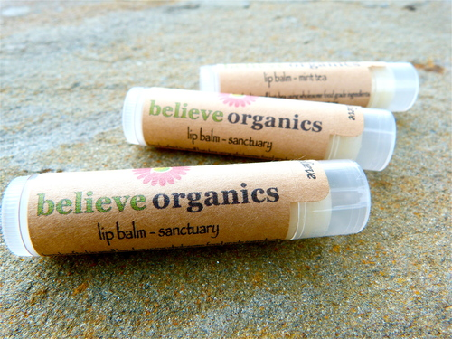 Lip Balm in Sanctuary by Believe Organics $5.50