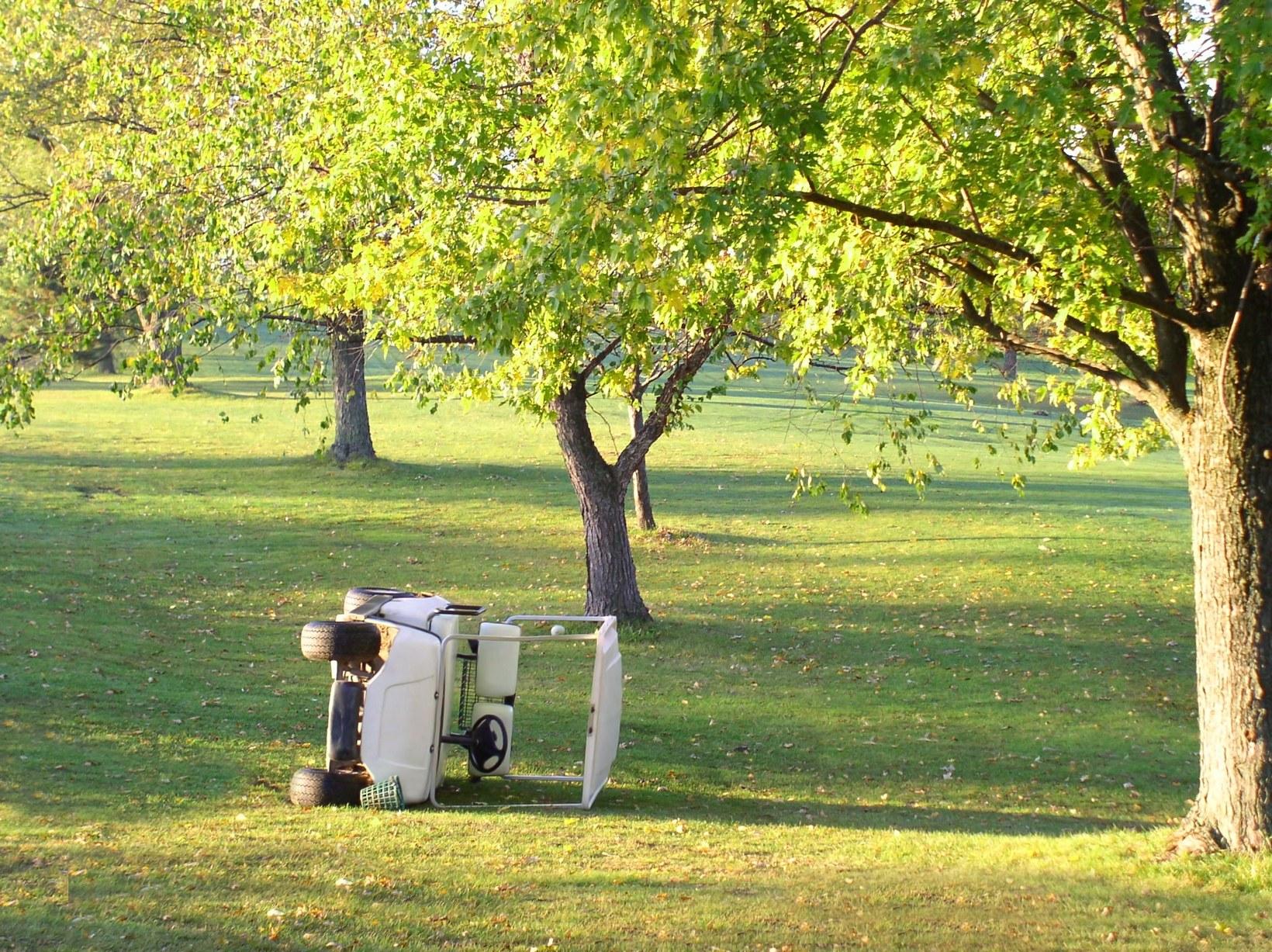 161117-golf-cart.jpg