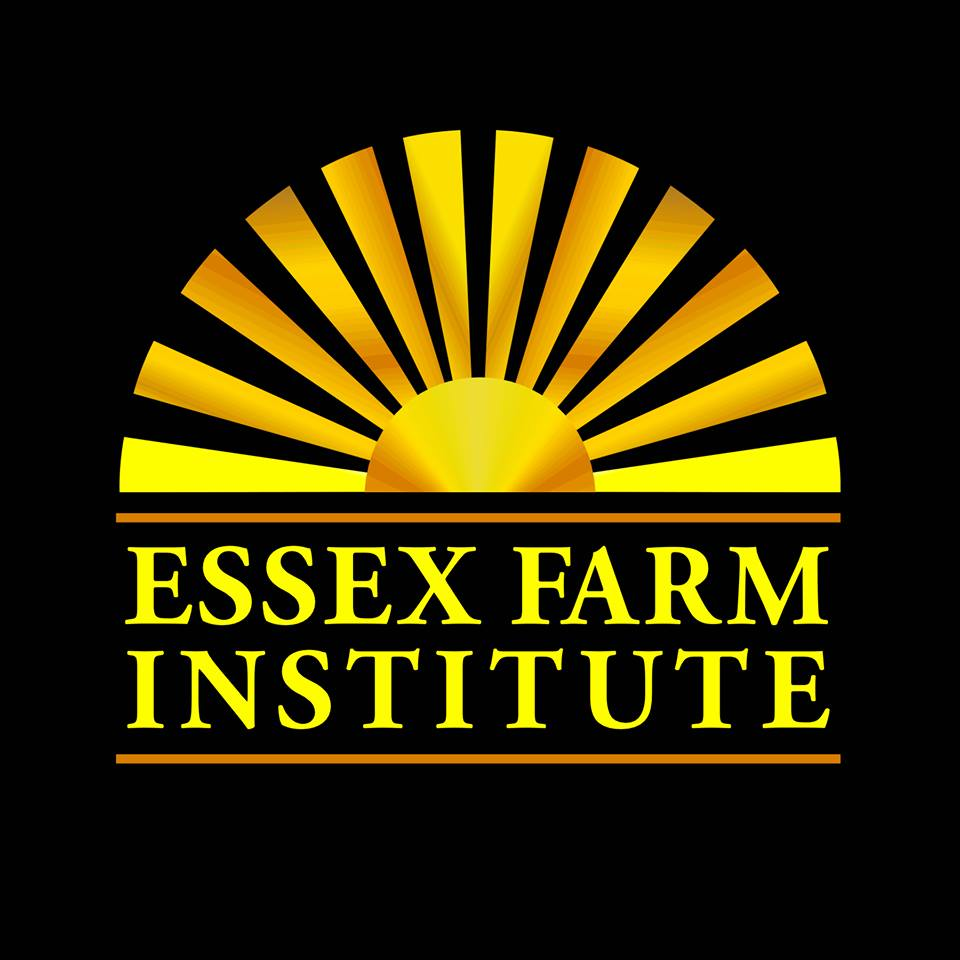 EFI logo.jpg