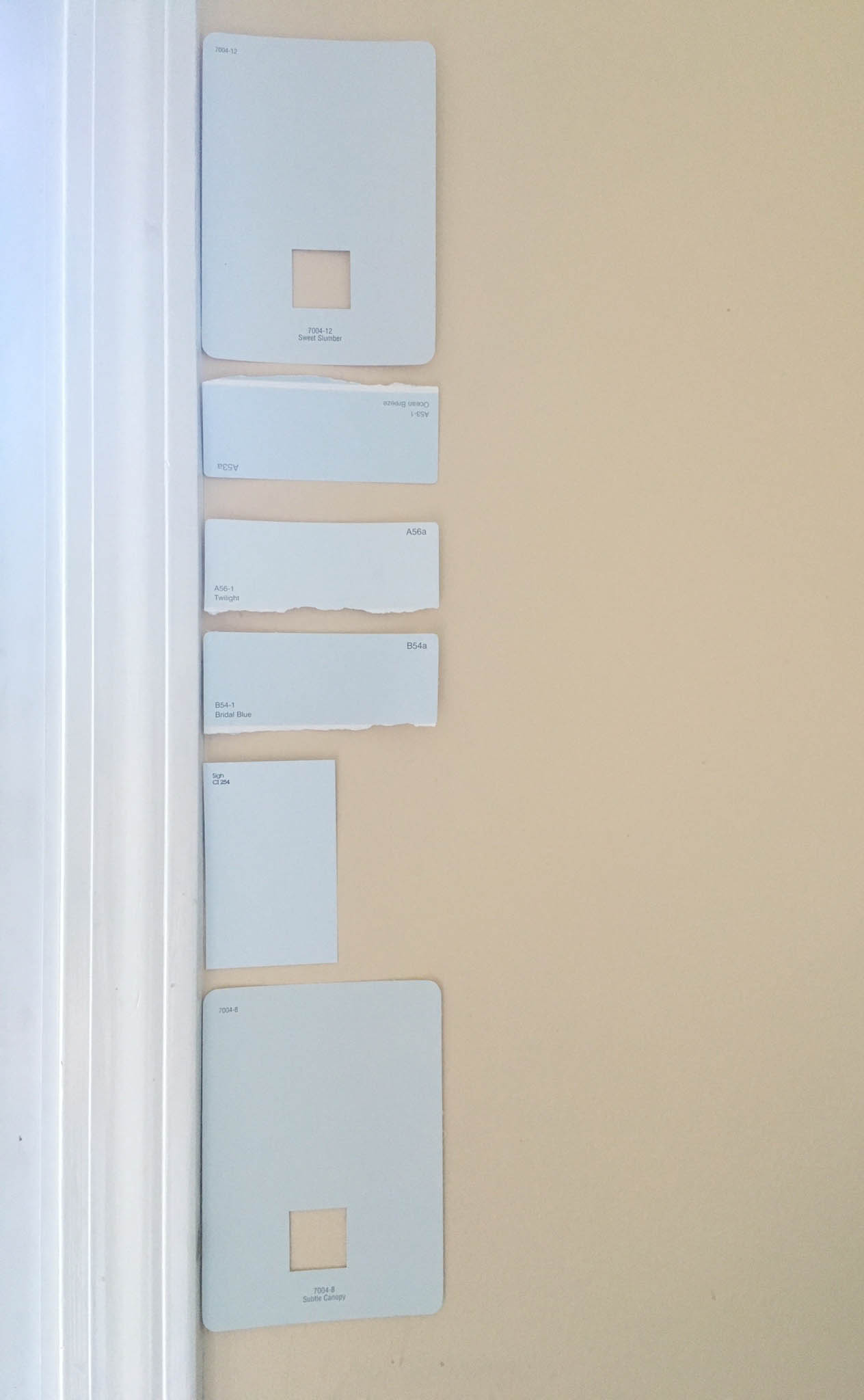 Kitchen Renovation Paint Swatches