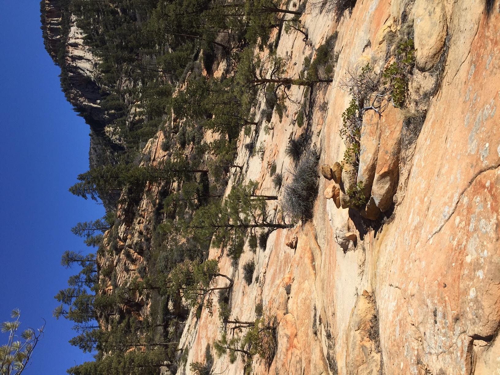 East Rim trail Zion National Park