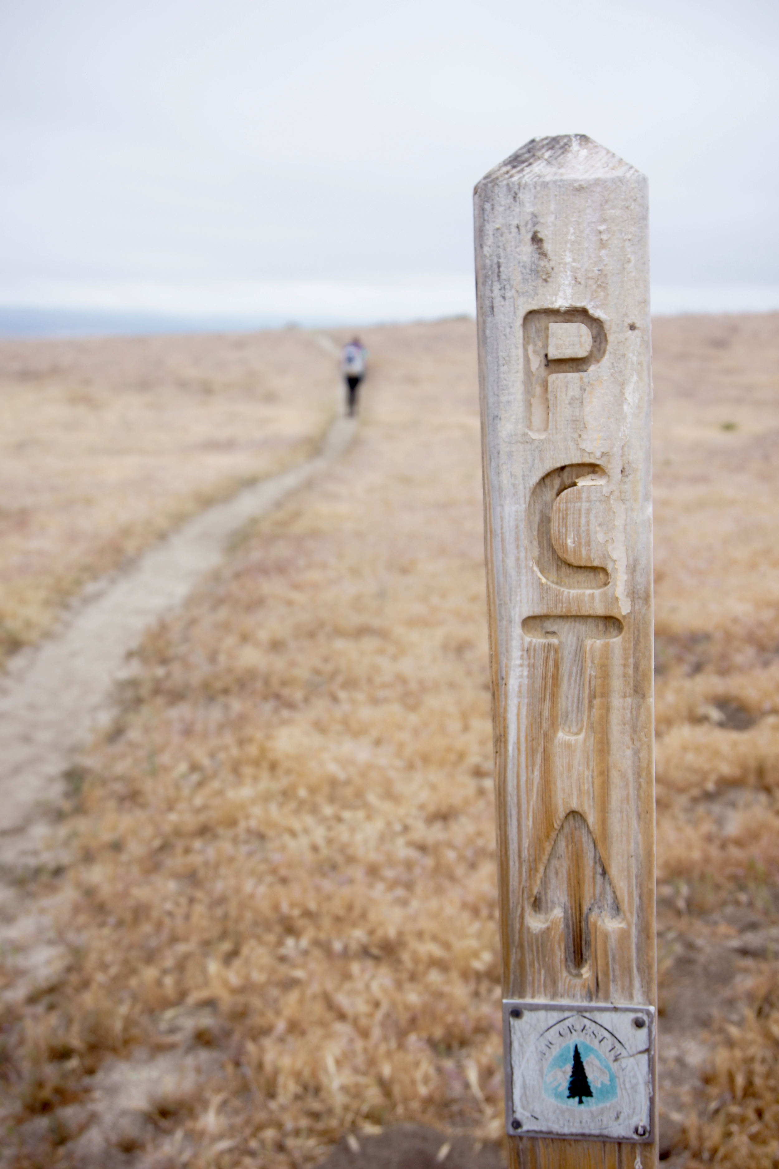 colter_co_PCT